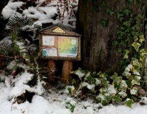 Tiny Fairy Message Board