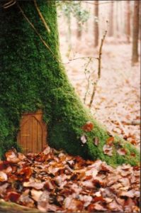 Fairy Door in the Woods