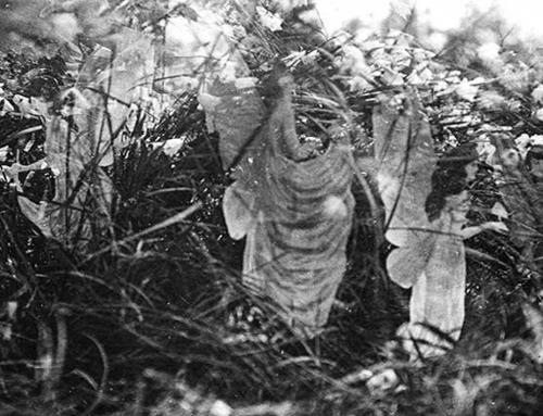 The Fifth Cottingley Fairy Photo