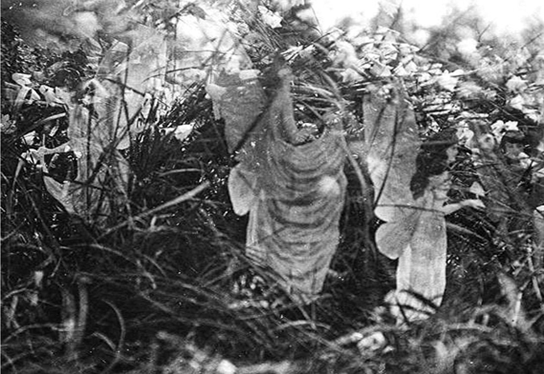The Fifth Cottingley Fairy Photo